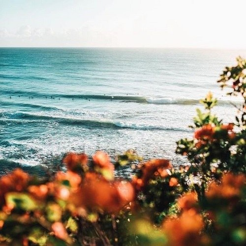 عکس منظره عاشقانه غمگین کنار دریا و ساحل