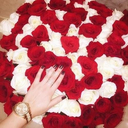 عکس سبد گل خیلی بزرگ رز های سفید و قرمز و دستی که روشون هست برای پروفایل