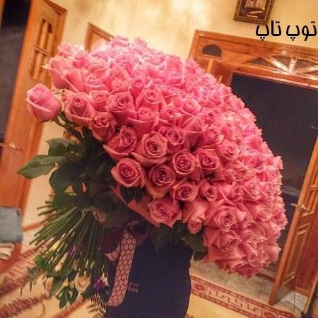 عکس پروفایل دخترونه دسته گل رز بزرگ صورتی رنگ در دست های دختر