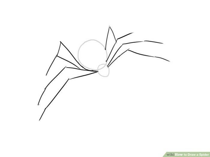 رسم پاهای عنکبوت
