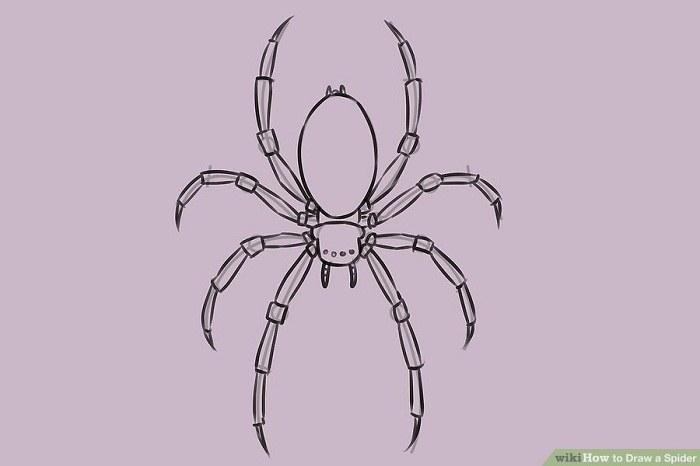 نقاشی چشم عنکبوت