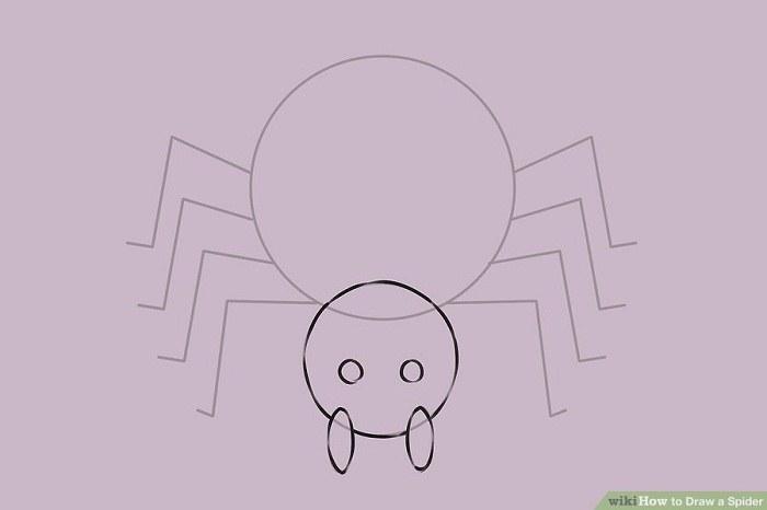 چشم های عنکبوت را بکشید