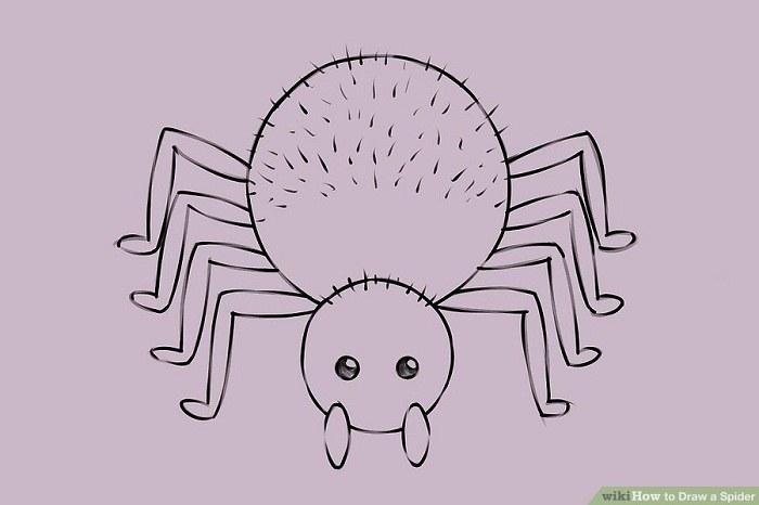کشیدن موهای سر و بدن عنکبوت