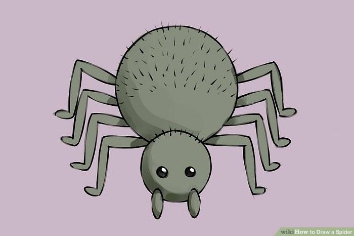 رنگ آمیزی نقاشی عنکبوت