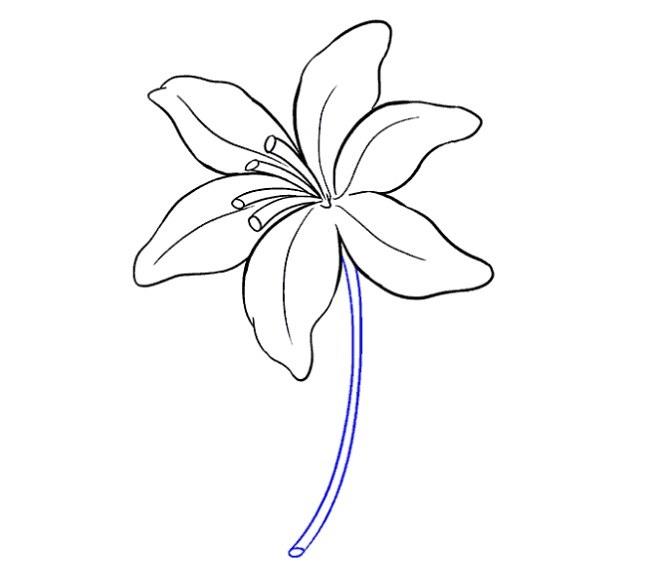 نقاشی اسان گل سوسن مرحله چهاردهم