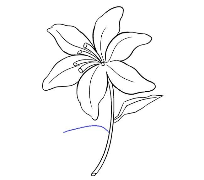 قدم به قدم نقاشی گل سوسن مرحله هفدهم