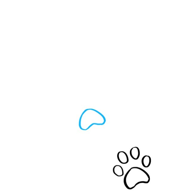 آموزش نقاشی رد پای پنجه گربه (3)
