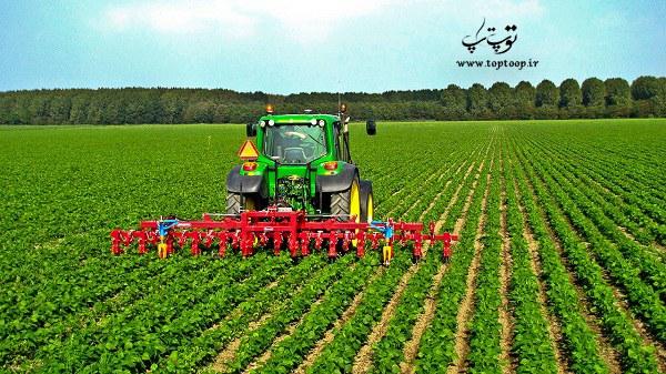 چه اسمی برای شرکت کشاورزی انتخاب کنیم