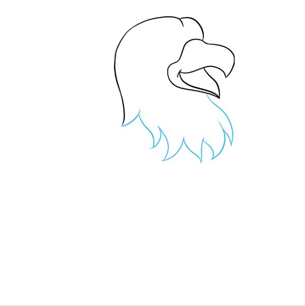 نقاشی شاهین برای کودکان مرحله 3