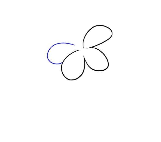 آموزش نقاشی گل سوسن مرحله چهارم