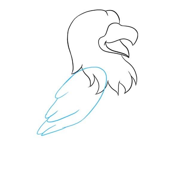 نقاشی شاهین برای کودکان مرحله 4