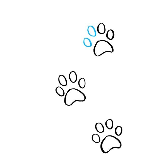 یادگیری نقاشی رد پای پنجه گربه (7)
