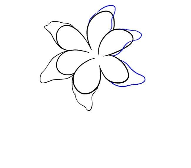 نقاشی کودکانه گل سوسن مرحله هفتم