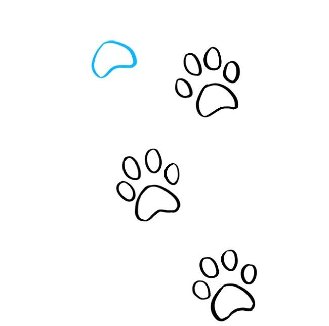 نقاشی رد پای پنجه گربه (8)