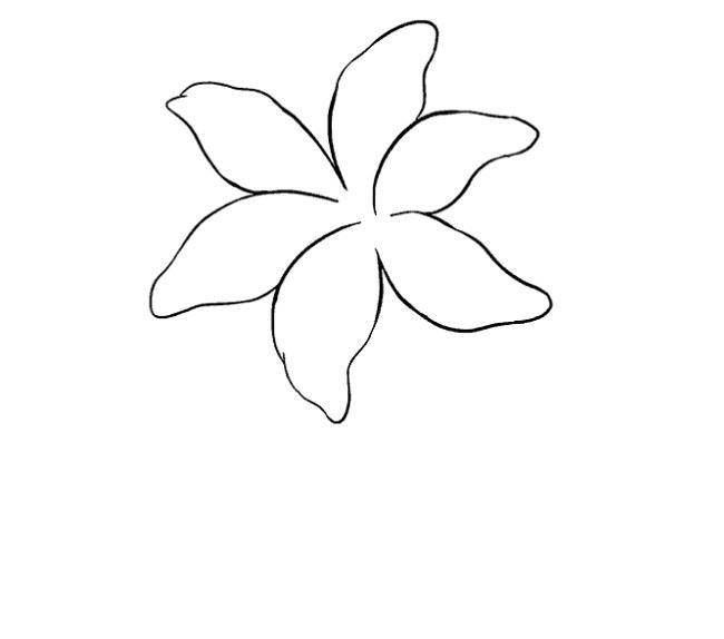 نقاشی کودکانه گل سوسن مرحله هشتم