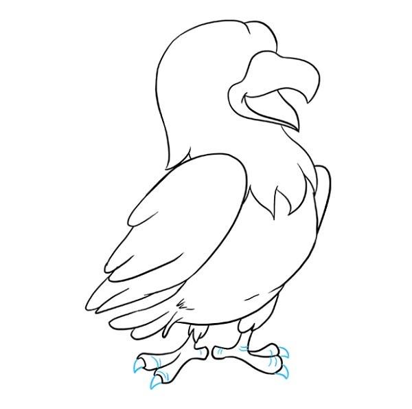نقاشی شاهین کارتونی برای بچه ها مرحله 8