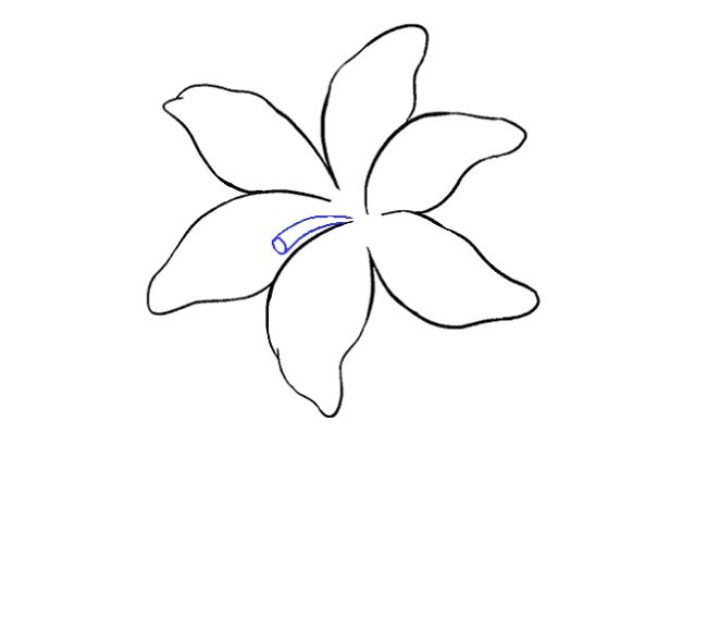نقاشی گل سوسن برای بچه ها مرحله نهم