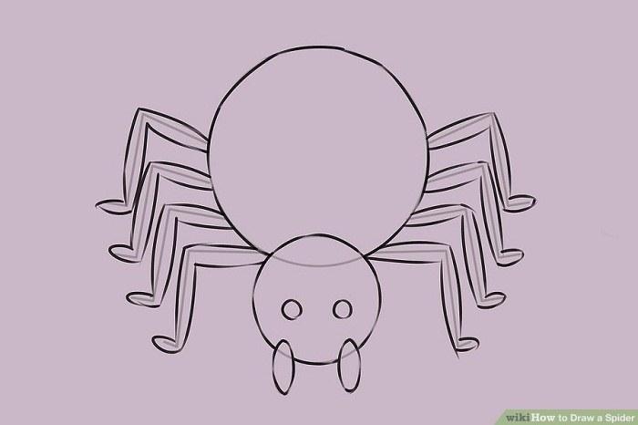 تکمیل پاهای عنکبوت