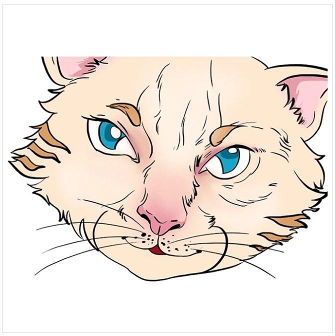 رنگ آمیزی نقاشی چشم های گربه