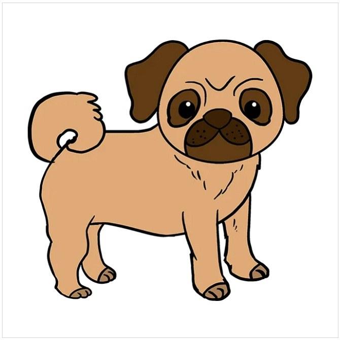 رنگ آمیزی نقاشی سگ پاکوتاه