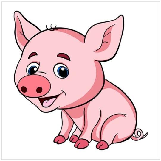 رنگ آمیزی نقاشی بچه خوک