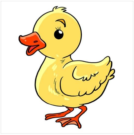 رنگ آمیزی نقاشی جوجه اردک