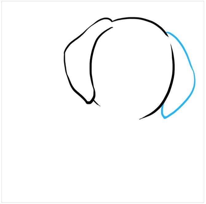 آموزش نقاشی توله سگ پاپی مرحله دوم