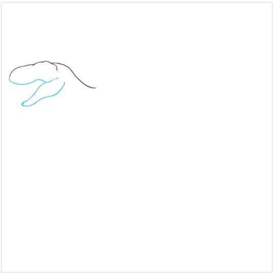 آموزش نقاشی دایناسور مرحله دوم
