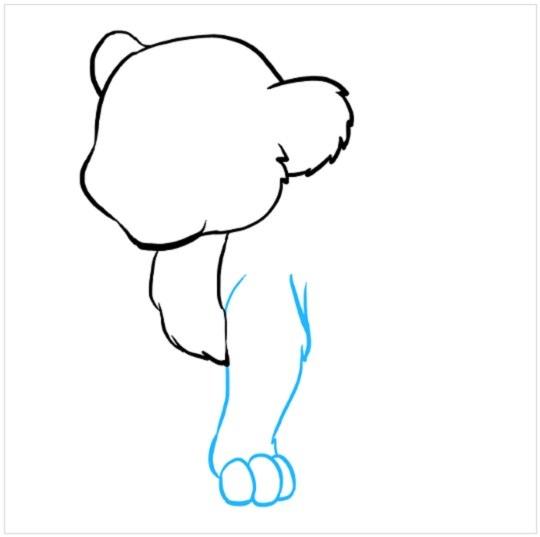 آموزش نقاشی توله شیر مرحله سوم