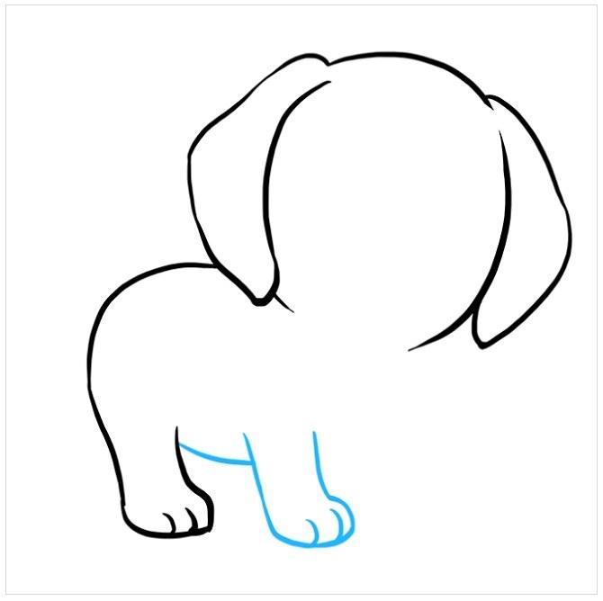 آموزش نقاشی توله سگ پاپی مرحله چهارم