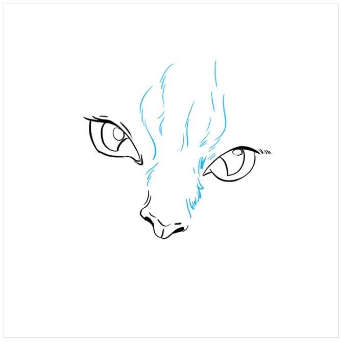 نقاشی چشم های گربه برای کودکان مرحله چهارم