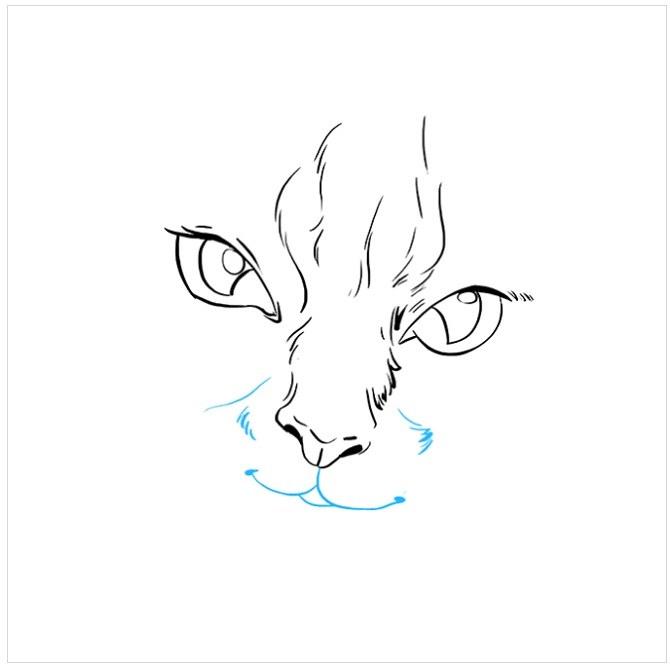 نقاشی آسان چشم های گربه مرحله پنجم