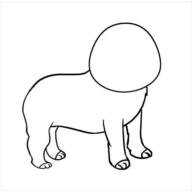 نقاشی سگ پاکوتاه برای کودکان مرحله پنجم