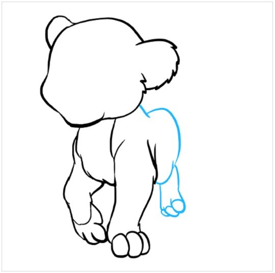 نقاشی توله شیر برای کودکان مرحله پنجم