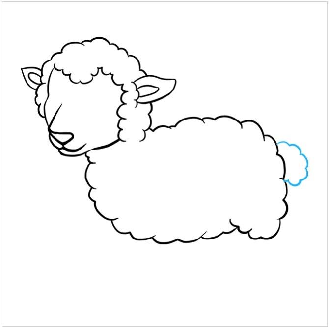 نقاشی بره برای بچه ها مرحله پنجم