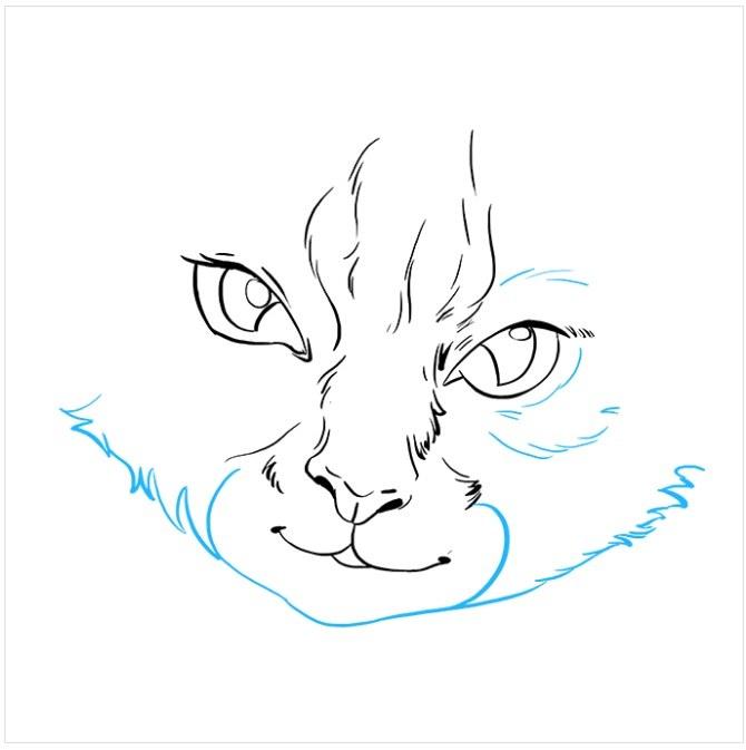 نقاشی آسان چشم های گربه مرحله ششم