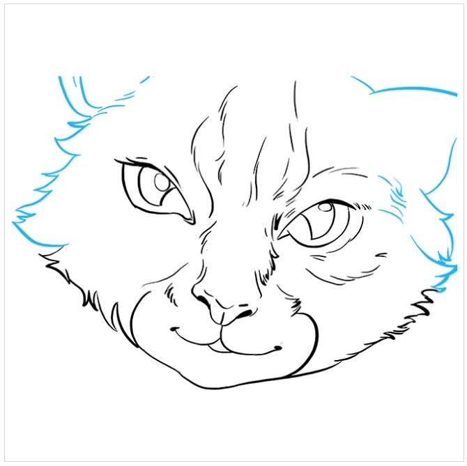 نقاشی چشم های گربه برای بچه ها مرحله هفتم