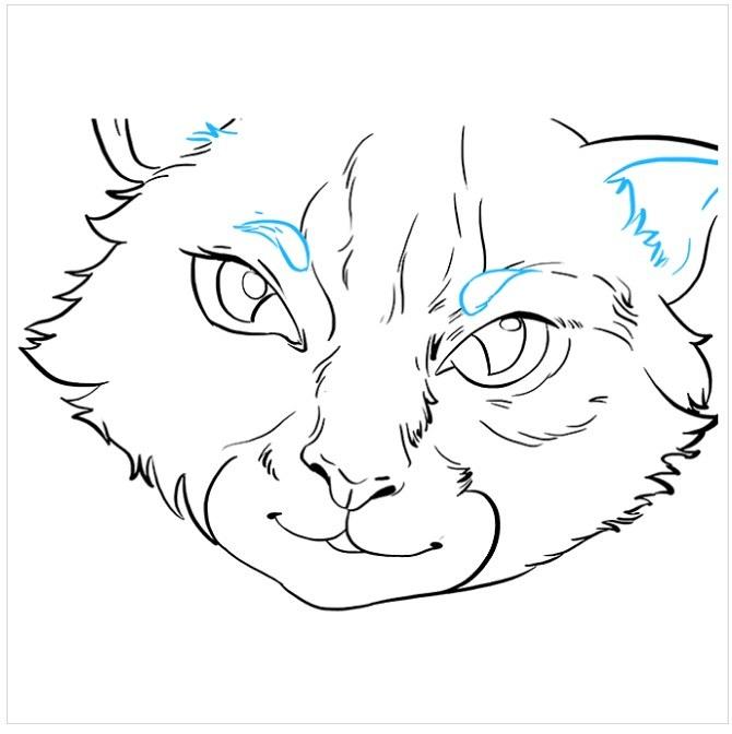 کشیدن نقاشی چشم های گربه مرحله هشتم