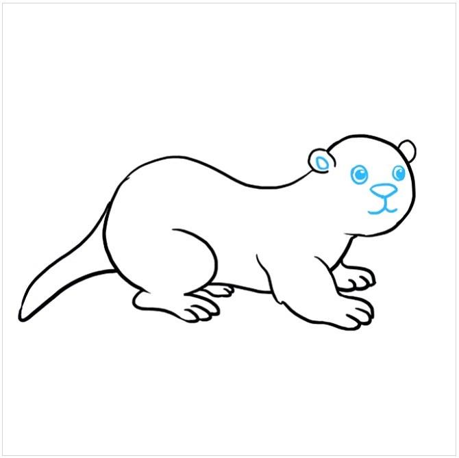 نقاشی سمور دریایی مرحله هشتم
