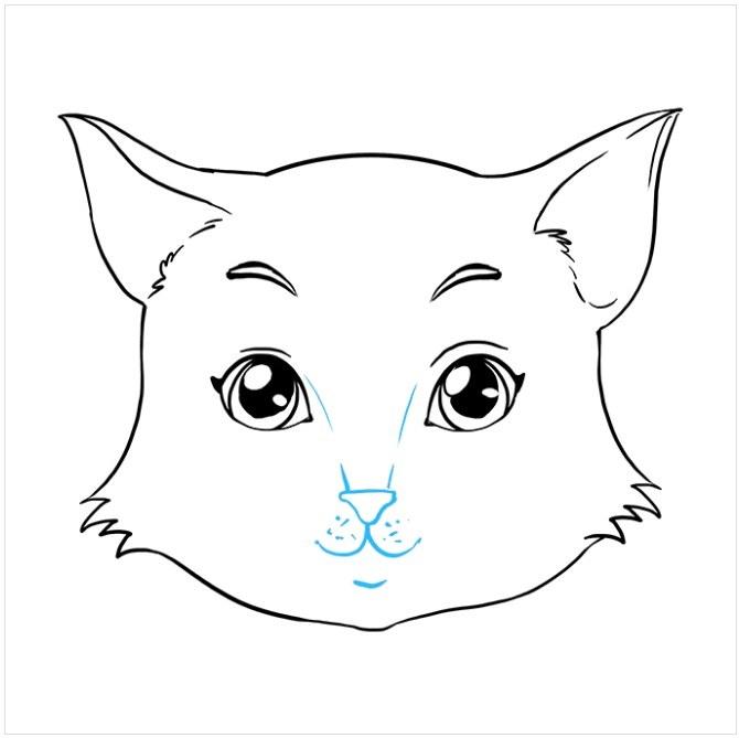 کشیدن نقاشی صورت گربه مرحله هشتم
