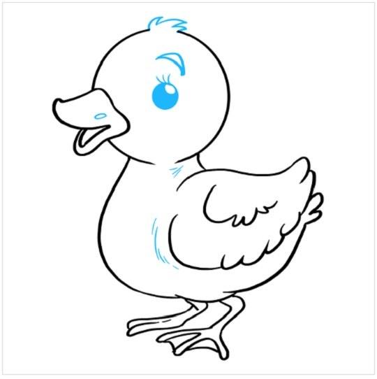 نقاشی جوجه اردک مرحله نهم