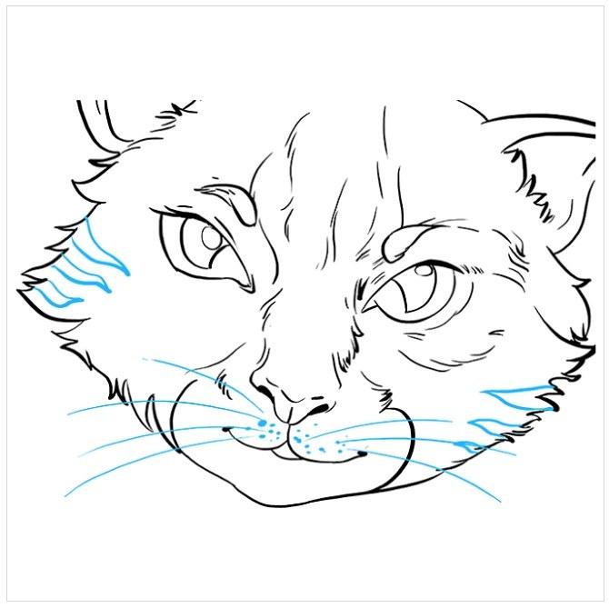 نقاشی چشم های گربه مرحله نهم
