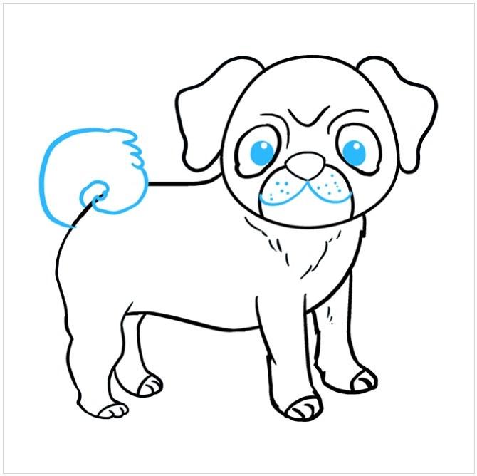 نقاشی سگ پاکوتاه مرحله نهم