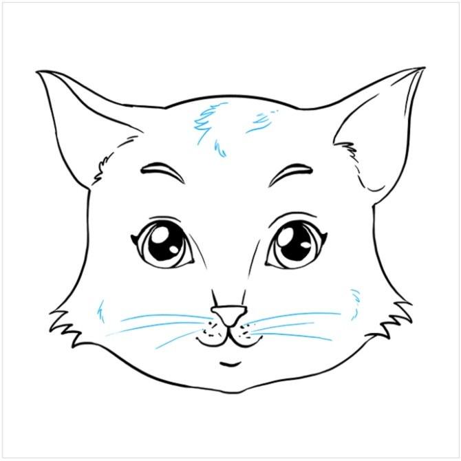 آموزش گام به گام نقاشی صورت گربه مرحله نهم