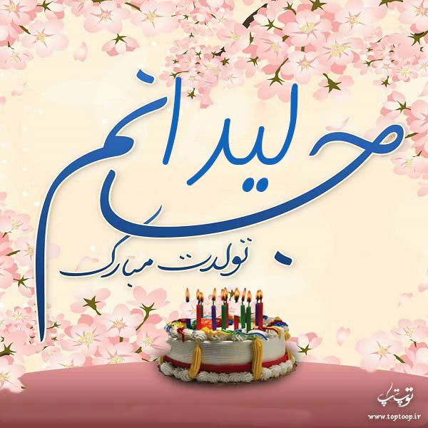 عکس تولدت مبارک ابجی لیدا