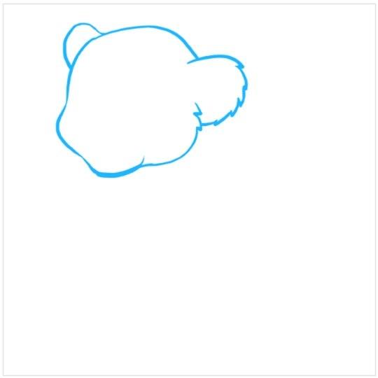 آموزش نقاشی توله شیر مرحله اول