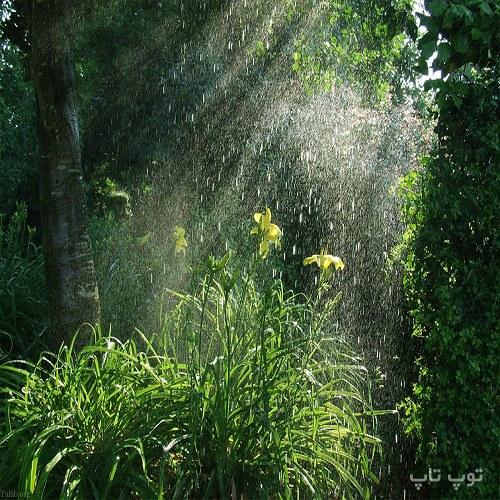 متن درباره باران بهاری