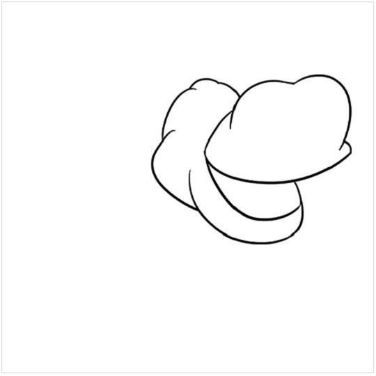 آموزش نقاشی کرگدن مرحله چهارم
