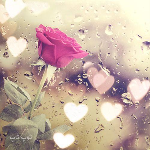 متن درباره باران و گل