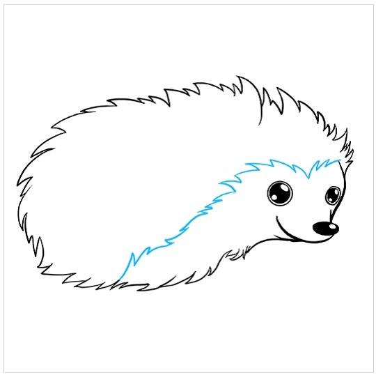 آموزش نقاشی جوجه تیغی برای کودکان مرحله پنجم